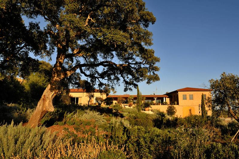 Azienda Monteverro